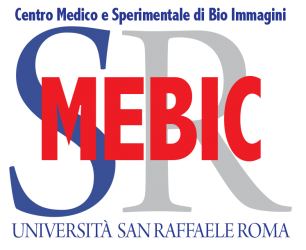 Consorzio Mebic